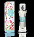 Женская парфюмерия Ламбре (Lambre)