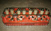 Головка блока цилиндров Д-245 МТЗ, ПАЗ 245-1003012 (пр-во ММЗ)