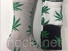 """Шкарпетки чоловічі """"коноплі"""" високі"""