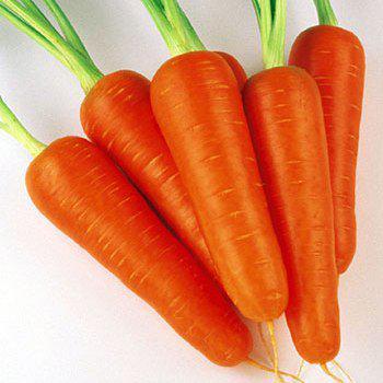 Семена моркови Абако F1 (1.8 - 2,0 )  1 млн. сем.