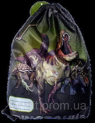 """Сумка для обуви """"Dinozaurs"""" WODN10, ТМ """"Derform"""" (Польша), фото 2"""