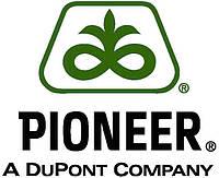 Озимий ріпак Pioneer®