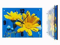 Часы для дома настенные Украина Патриот