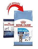 Сухой корм Royal Canin Maxi Puppy (Junior) Active 15кг