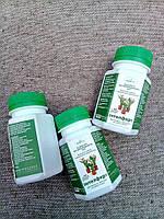 Біоорганічне добриво INTELFERT для квітів, 0,1 л
