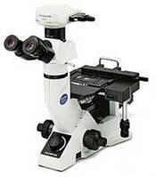 Микроскопы инвертированные. GX-41.