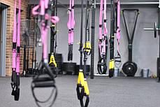 TRX Петлі підвісні тренувальні PRO PACK HOME PINK P3 FI-3726-P, фото 2