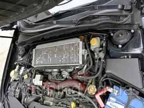 Передняя верхняя распорка стаканов Subaru Forester 97-02 TurboWorks