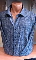 Рубашка мужская с длинным рукавом приталенная DERGI 3003