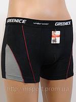 Купить трусы мужские  Greenice  Арт.GW82034, фото 1