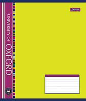 Тетрадь 36 листов клетка А5 1 Вересня Оxford фоновая - 17 общая. 795401