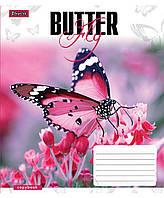 Тетрадь 48 листов клетка А5 1 Вересня Butterflys -17 общая. 760392