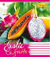 Тетрадь 48 листов клетка А5 ЗУ Exotic Fruits-17 общая. 794976