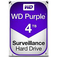 Жорсткий диск внутрішній Western Digital Purple (WD40PURZ)