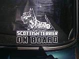 Наклейка на авто / машину Кангал на борту (Kangal Shepherd Dog On Board), фото 5