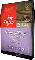 Orijen Puppy Large корм для щенков крупных пород, 11.4 кг, фото 1