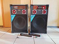 Активная акустика BIG-12 с микрофонами, фото 1