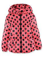 Куртка для девочек Рима (Коралл 98)