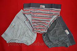 Детский набор трусов для мальчика (3 шт) (OZTAS, Турция)