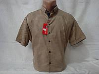Мужская рубашка с коротким рукавом Redpolo, Турция