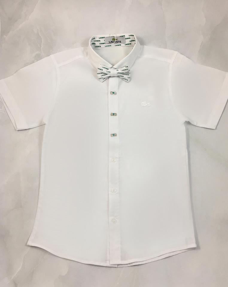 Белая рубашка для мальчика Lacoste, с бабочкой 5107 (р.152/158)
