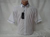 Мужская рубашка с коротким рукавом Dergi, Турция, фото 1