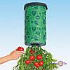 Пристрій для вирощування культур «Плантація», 1000267, вирощування томатів дома, вирощування огірків вдома