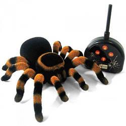 Павук тарантул на Р/У3020