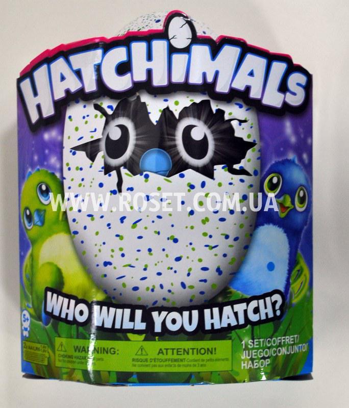 Іграшка сюрприз яйце - Hatchimals Who Will You Hatch