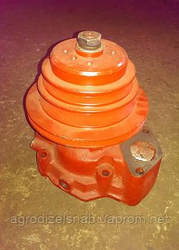 Водяний насос Д-442 (Алтаец) (10-13с3-2А)