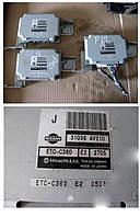 Блок управления NISSAN PRIMERA P12   31036AV210 (31036-AV210)