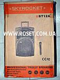 Колонка профессиональная на колесиках + микрофон - SkyRocket BT12A+ 1000W, фото 2