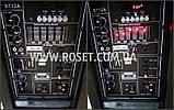Колонка профессиональная на колесиках + микрофон - SkyRocket BT12A+ 1000W, фото 5