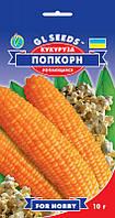 Кукуруза Попкорн суперранний европейский лопающийся сорт початки вкусные ароматные, упаковка 10 г