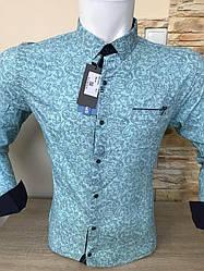 АКЦИЯ!!!Рубашка длинный рукав Mir Taron  мята