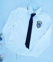 Блуза школьная нарядная, длинный рукав, р. 128-152, белый