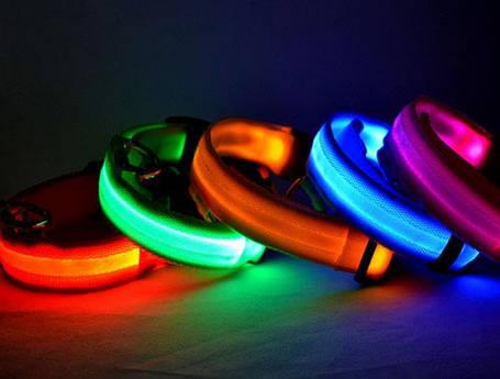 Светодиодный ошейник для собак, светящийся ошейник, оранжевый S, фото 2