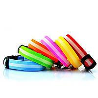 Светодиодный ошейник для собак, светящийся ошейник, оранжевый S, фото 3