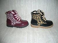 Демисезонные ботинки для девочек Clibee размер 23