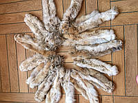 Лапы рыси из натурального меха, фото 1