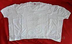 Набор белых футболок для мальчика (3 шт) (OZTAS, Турция)