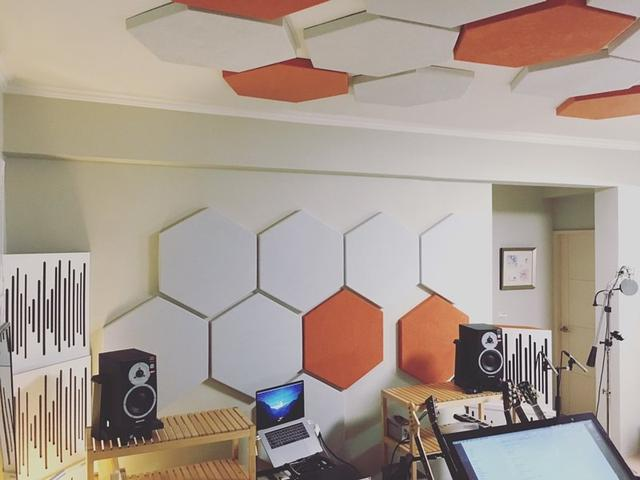 Vicoustic Vixagon 40 FS Premium звукопоглощающая панель
