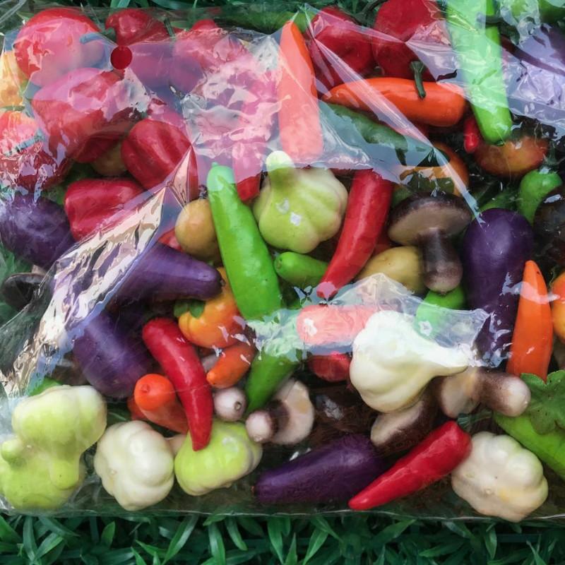 Искусственные овощи.Набор искусственных овощей (мини)
