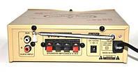 Усилитель AMP усилитель звука 220V 12V