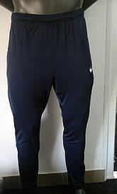 Штаны мужские TEAM-каталог Брюки Nike 869608-451(05-06-07-01) M