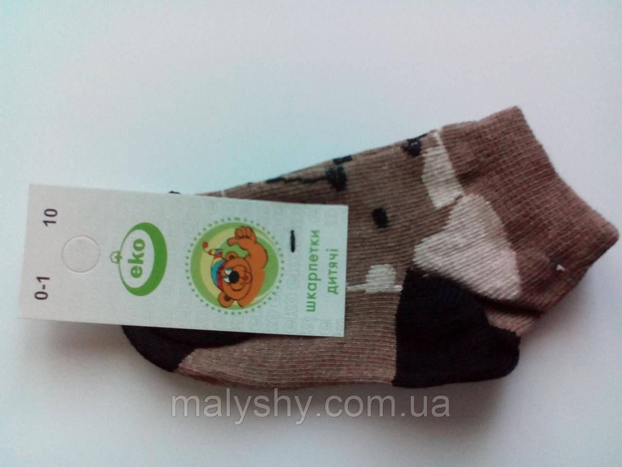 Детские носки демисезонные - Эко 4133 р.10 (шкарпетки дитячі, Еко)