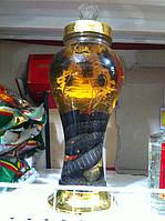 Лечебная спиртовая настойка на Большой кобре 3 литра (Вьетнам), фото 1