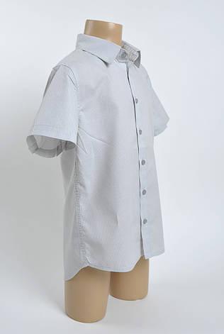 Рубашка поло для хлопчика, фото 2
