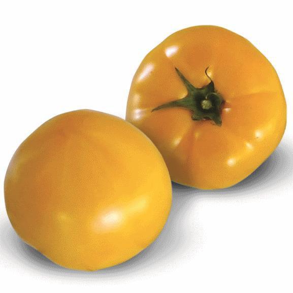 Семена томата Ямамото KS-10 F1 (100 сем.)