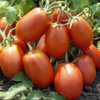 Семена томата Рио Гранде (500 г) Lark Seeds